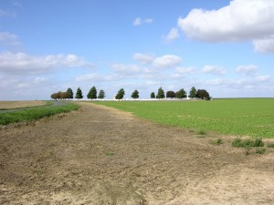 Standing on the silent field of battle looking towards Adanac Military Cemetery, France.