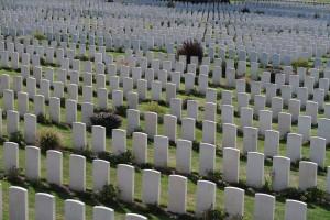 Tyne Cot Cemetery, Passchendaele, Belgium. (P. Ferguson image, 2016)