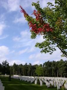 Brookwood Military Cemetery.  The reddening of the leaves, nature bleeds.(P. Ferguson image, September 2010)