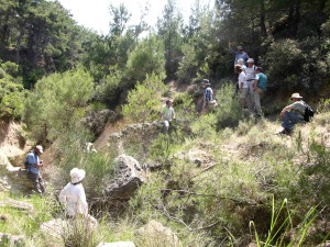 Gully Ravine, Gallipoli